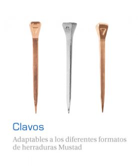 Clavos Movil
